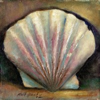 Scallop by Hall Groat II - various sizes