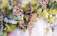Grapes On The Vine by Joanne Porter - various sizes