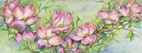 Pink Dogwood by Joanne Porter - various sizes