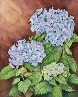 Blue Hydrangeas by Joanne Porter - various sizes