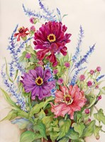 Zinnias and Blue Salvias by Joanne Porter - various sizes