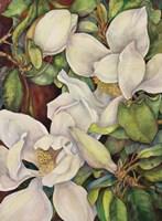 Georgia Magnolias Fine Art Print