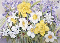 Early Spring by Joanne Porter - various sizes