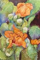 Desert Blooms by Joanne Porter - various sizes