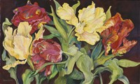 Red And Yellow Parrot Tulips Fine Art Print
