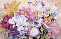 Spring's Rainbow Fine Art Print