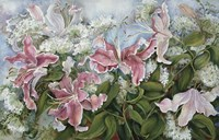 Pink Star Gazer Lilies by Joanne Porter - various sizes