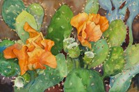 Blossoming Cactus by Joanne Porter - various sizes