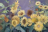 Sunflower In Purple Sky by Joanne Porter - various sizes