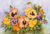 Pansies in a Blue Sky by Joanne Porter - various sizes