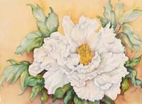 """24"""" x 17"""" Flowers"""