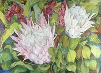 Protea And Red Ginger Fine Art Print