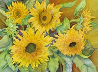 Sun Dance by Joanne Porter - various sizes