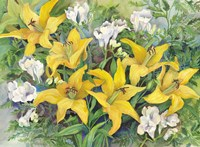 Gold Lilies And Freesia by Joanne Porter - various sizes