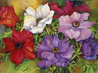 Anemones by Joanne Porter - various sizes