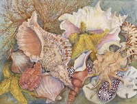 Treasures Of The Sea by Joanne Porter - various sizes - $29.99
