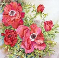 Red Anemones Fine Art Print