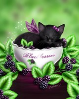 Blackberry Kitten Fine Art Print