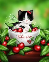 Cherry Kitten by Melissa Dawn - various sizes
