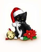 Santa Claws Framed Print
