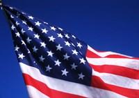 American Flag Waving in the Wind Fine Art Print