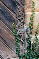 Rose Garden in Bamberg, Germany by Michael DeFreitas - various sizes