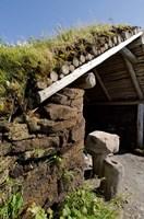 L'Anse aux Meadows by Cindy Miller Hopkins - various sizes