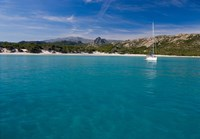 Corsica Sailboat at Saleccio Beach Fine Art Print