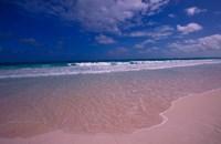 Pink Sand Beach, Bahamas Fine Art Print