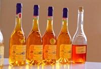 Bottles of Disznoko Winery, Tokaj, Hungary Fine Art Print