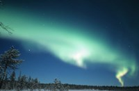 The Aurora Borealis, Lapland, Finland Fine Art Print