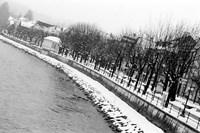 River Salzach in Winter Fine Art Print