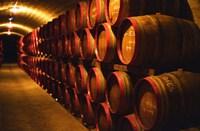 Barrels of Tokaj Wine in Disznoko Cellars, Hungary Fine Art Print