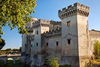 Tarascon Castle, Arles, Provence, France Fine Art Print