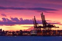 Cargo Cranes, Port of Vancouver Fine Art Print