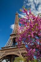 Pink Tree by the Eifel Tower Fine Art Print