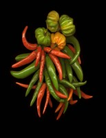Hot Peppers 3 Fine Art Print