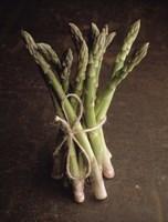 Asparagus Fine Art Print