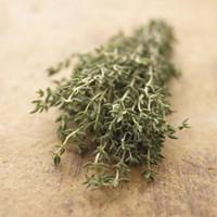 Herbs Fine Art Print