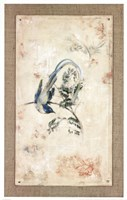 Asian Paradise - Flycatcher Fine Art Print