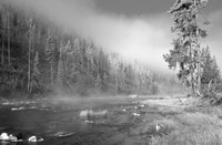 Yellowstone 1 Fine Art Print
