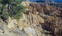 Bryce Canyon 3 Fine Art Print