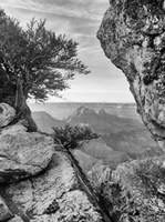 Grand Canyon 7 Fine Art Print