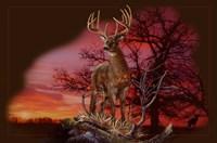 Red Autumn Fine Art Print