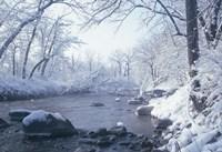 Buffalo River Snow 45 Fine Art Print