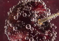 Marroon Fruit Closeup With Raindrops II Framed Print