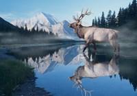 Reflections Of Glacier Fine Art Print