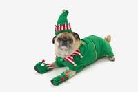 Christmas Pug Fine Art Print