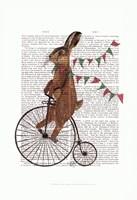 Rabbit On Penny Farthing Framed Print