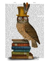 Owl On Books Fine Art Print